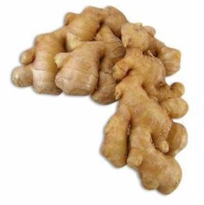 [Image: ginger2.jpg?w=297&h=300]